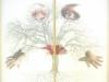 bio-logica-dittico-2006-organza-stampata-e-foto-cm-156x86x6-copia