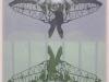 bobolfly-2-organza-stampata-e-foto-cm-47x62-copia